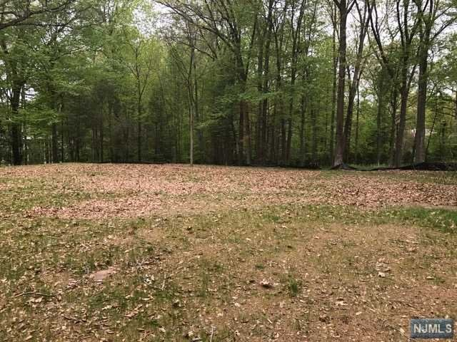 Land / Lots for Sale at 103 Chestnut Ridge Road Saddle River, New Jersey 07458 United States