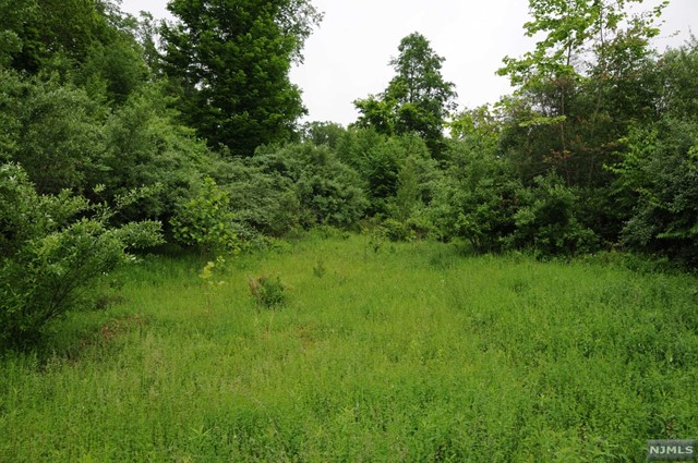 Land / Lots for Sale at 16A Spring Hill Ln 16A Spring Hill Ln Port Murray, New Jersey 07865 United States