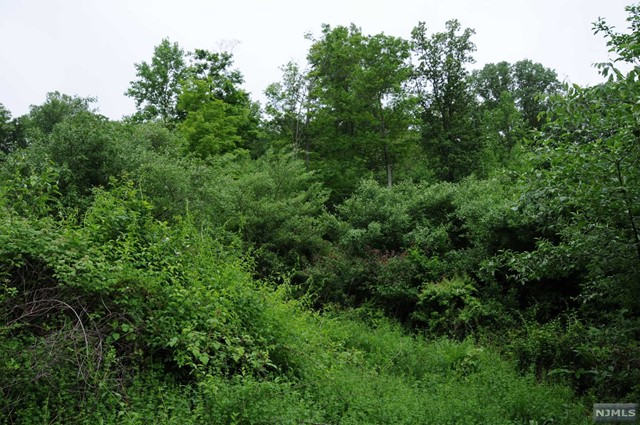 Land / Lots for Sale at 18 Spring Hill Ln 18 Spring Hill Ln Port Murray, New Jersey 07865 United States