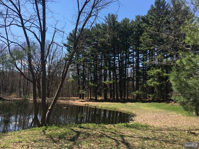 Additional photo for property listing at 1004 Clark Rd 1004 Clark Rd Franklin Lakes, Nueva Jersey,07417 Estados Unidos