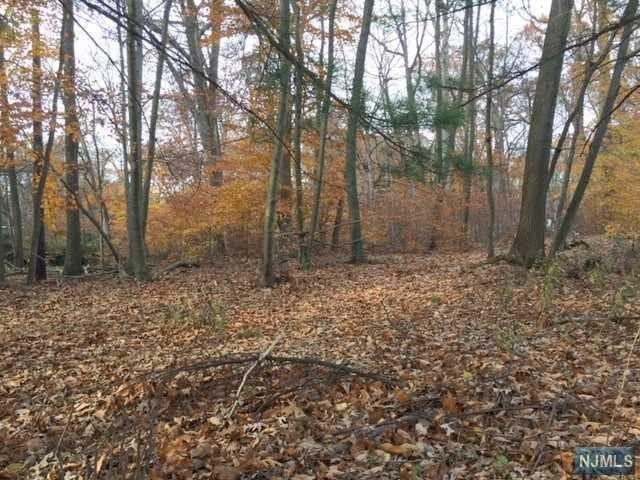 Land / Lots for Sale at 78 Woodcliff Lake Road 78 Woodcliff Lake Road Saddle River, New Jersey 07458 United States
