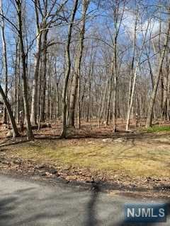 Land / Lots for Sale at Jahn Court Mahwah, New Jersey 07430 United States