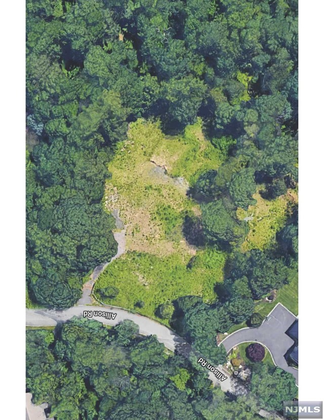 Land / Lots for Sale at 40 Allison Road Alpine, New Jersey 07620 United States